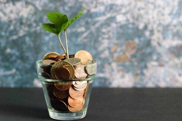 Photo of cup of coins with plant growing out of it
